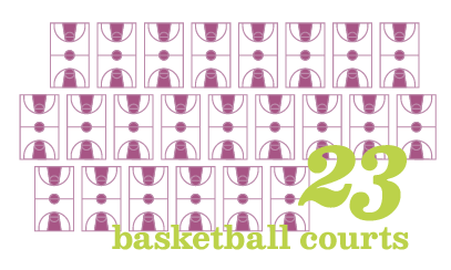23 basketball courts visual graphic